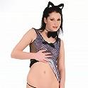 Nasty kitten